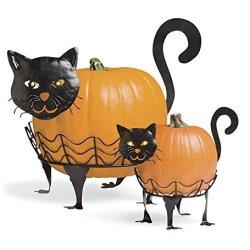 Bright-Eyed Cat Pumpkin Holders