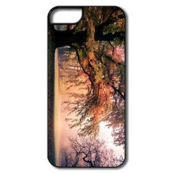Graphic Momax Fall Iphone 5S Case