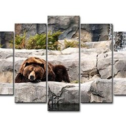 5 Piece Wall Art Painting Grizzly Bear Resting In The Stone Pictures Prints On Canvas Animal The Picture Decor Oil For Home Modern Decoration Print For Girls Bedroom