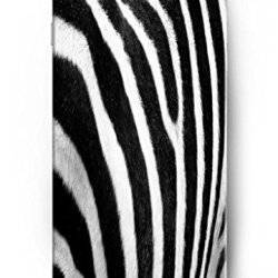 Ouo Apple Iphone 6 Plus Case (5.5 Inch) Perfit Fit Comfortable Touch - Zebra Skin Pattern