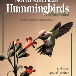 Carving North American Hummingbirds & Their Habitat: Includes: Special Habitat Carving And Construction Details