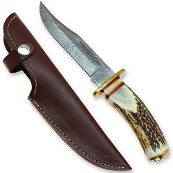 Colorado Rockies Stag Handle Damascus Steel Forged Knife - Clip Point Blade