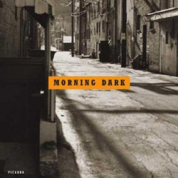 Morning Dark: A Novel