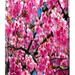 Fantastic Faye Cell Phone Cases For Iphone 6 No.2 The Beautiful Design With Japanese Cherry