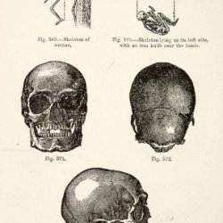 1889 Wood Engraving Skeleton Woman Iron Knife Skull Burial Viking Archaeology - Original In-Text Wood Engraving