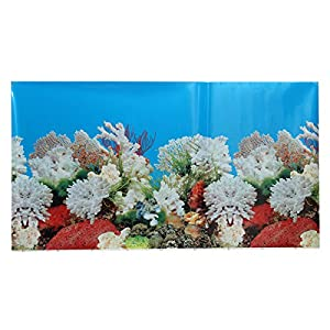 AUDEW Fish Tank Background Aquarium Landscape Poster Wall Double Sided