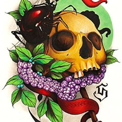 Voyeur By Siege Spider Skull With Grapes And Dagger Tattoo Canvas Art Print