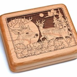 "5X6"" Box With Black And Burlwood Knife - Deer/Bucks"