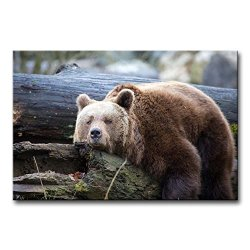 Wall Art Painting Lazy Bear On The Tree Trunk Prints On Canvas The Picture Animal Pictures Oil For Home Modern Decoration Print Decor For Kitchen