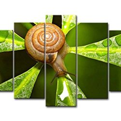 5 Piece Wall Art Painting Snail In The Leaf With Dew Pictures Prints On Canvas Animal The Picture Decor Oil For Home Modern Decoration Print For Items