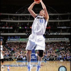 Dirk Nowitzki 2013-14 Action Art Poster Print Unknown 8X10