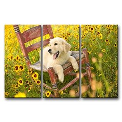 3 Panel Wall Art Painting Golden Retriever Puppy On The Chair Pictures Prints On Canvas Animal The Picture Decor Oil For Home Modern Decoration Print For Bathroom