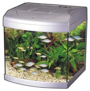 pet supplies fish aquatic pets aquariums fish bowls aquariums