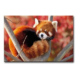 Wall Art Painting Red Panda In The Tree Pictures Prints On Canvas Animal The Picture Decor Oil For Home Modern Decoration Print For Decor Gifts