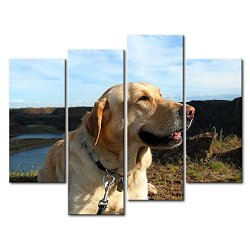 4 Panel Wall Art Painting Golden Retriever Up Ahead In The Distance Prints On Canvas The Picture Animal Pictures Oil For Home Modern Decoration Print Decor For Kids Room