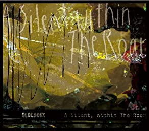 A Silent,within The Roar(初回限定盤)(DVD付)