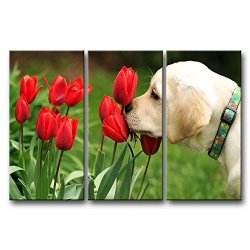 3 Panel Green Wall Art Painting Golden Retriever Puppy Smelling The Tulips Prints On Canvas The Picture Animal Pictures Oil For Home Modern Decoration Print Decor For Kids Room