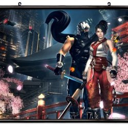 "Ninja Gaiden Videogame Fabric Wall Scroll Poster (32"" X 24"") Inches"