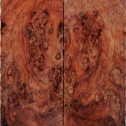 "Rosewood Honduran Burl Eye Exceptional (2 Pc) Knife Scales 1/4""X1 1/2""X5"" Ex1"