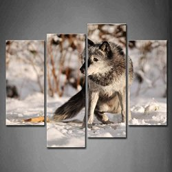 4 Panel Wall Art Grey Timber Wolf In Snow Snowfield Painting The Picture Print On Canvas Animal Pictures For Home Decor Decoration Gift Piece (Stretched By Wooden Frame,Ready To Hang)