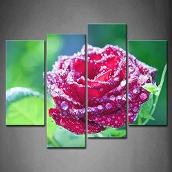 4 Panel Wall Art Purple Flower Red Rose With Dew Drops On A Green Background Painting Pictures Print On Canvas Flower The Picture For Home Modern Decoration Piece (Stretched By Wooden Frame,Ready To Hang)