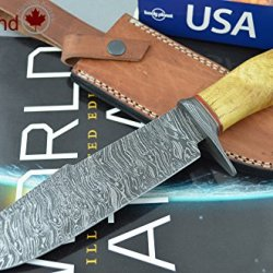 Coldland | Retail More Than 300$ Special Offer Custom Handmade Damascus Steel Hunting Knife With Rare Himalayan Exotic Wood Cl01
