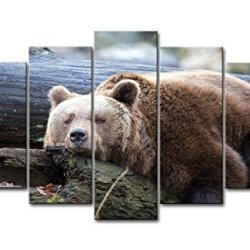 5 Piece Wall Art Painting Lazy Bear On The Tree Trunk Prints On Canvas The Picture Animal Pictures Oil For Home Modern Decoration Print Decor For Kitchen