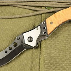 Outdoor Stainless Steel Hole Wood Handle Fixed Blade Knife Bln336-7.59''