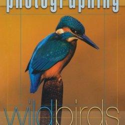 Photographing Wild Birds