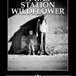 A Gas Station Wildflower