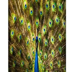 Apple Accessories Beautiful Peacock Cell Phone Cases Design Special For Iphone 5/5S No.8