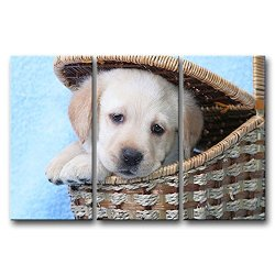 3 Panel Wall Art Painting Golden Retriever Puppy In A Basket Prints On Canvas The Picture Animal Pictures Oil For Home Modern Decoration Print Decor For Kitchen
