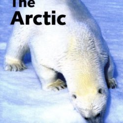 Lonely Planet Arctic (Lonely Planet Greenland & The Artic)