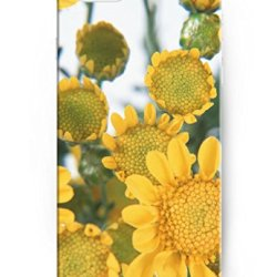 Perfect Fit Slim Cases For Iphone 6 (4.7 Inch), Ukase High Quality Hard Cover Case With Stylish Design Of Sunflower Buds