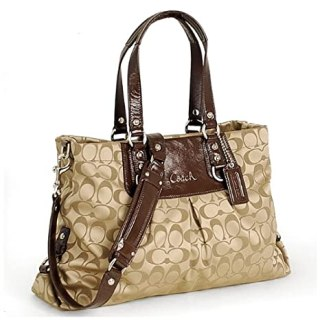 51xnYepeqyL. SX466  Blogger Opp: Coach Ashley Signature Carryall Value $398 Giveaway