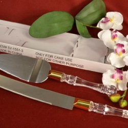 Acrylic Handle Cake Knife And Server Set For Wedding Baby Shower Any Occasion