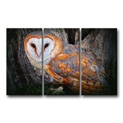 3 Piece Wall Art Painting Golden Feathers Owl Pictures Prints On Canvas Animal The Picture Decor Oil For Home Modern Decoration Print