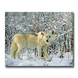Wall Art Painting Gray Wolf Forage In Winter Pictures Prints On Canvas Animal The Picture Decor Oil For Home Modern Decoration Print