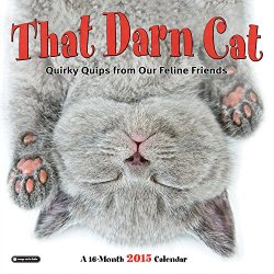 Orange Circle Studio 16-Month 2015 Wall Calendar, That Darn Cat: Quirky Quips From Our Feline Friends (51155)