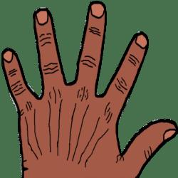 Five Finger Fillet