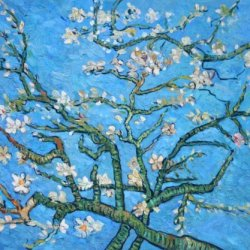 Van Gogh - Branches Of An Almond Tree In Blossom (Interpretation In Blue) Oil Painting On Canvas Repro 20X24""