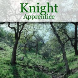Anarchist Knight:Apprentice