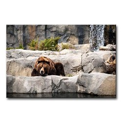 Wall Art Painting Grizzly Bear Resting In The Stone Pictures Prints On Canvas Animal The Picture Decor Oil For Home Modern Decoration Print For Girls Bedroom