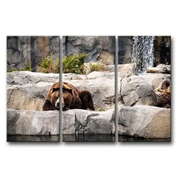 3 Panel Wall Art Painting Grizzly Bear Resting In The Stone Pictures Prints On Canvas Animal The Picture Decor Oil For Home Modern Decoration Print For Girls Bedroom