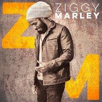 Ziggy Marley-Ziggy Marley-CD-FLAC-2016-YARD