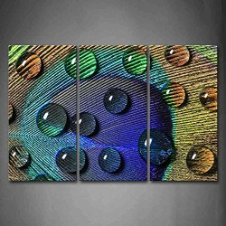 Water Drops On The Feather Of Peacock Wall Art Painting Pictures Print On Canvas Art The Picture For Home Modern Decoration