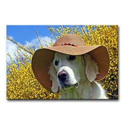 Wall Art Painting Golden Retriever With A Summer Hat Pictures Prints On Canvas Animal The Picture Decor Oil For Home Modern Decoration Print For Girls Bedroom