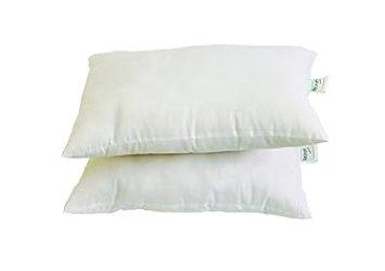 Recron 2 Piece Swiss Cotton Dream Pillow