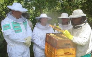 Honeychild - Beekeeping Theory in Rheenedal 1n