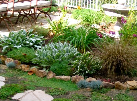 No lawn backyard by Shirley Bovshow
